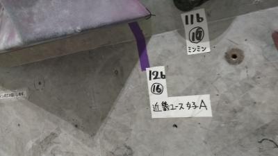 Kimg2244